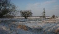 landschaft_zuetzen009