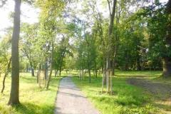 arbeitseinsatzlenepark2015_04